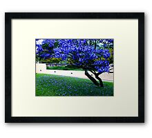 purple above and below Framed Print