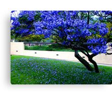 purple above and below Canvas Print