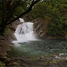 Josephine Falls FNQ by Chris Cohen