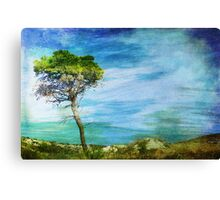 Where Wind In The Tree Blows Canvas Print