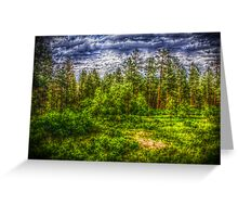 Mountain Park-Forest Greeting Card