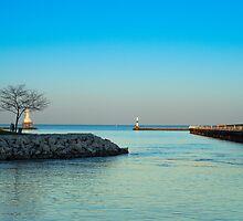 Summer Marina by James Meyer