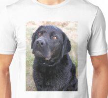 I think I deserve a biscuit Unisex T-Shirt