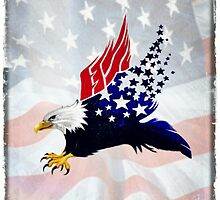 American Eagle by homiluis