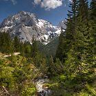 Glimpses of Austria by Stefan Trenker