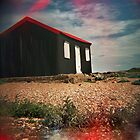 #red hut by PAUL FRANCIS
