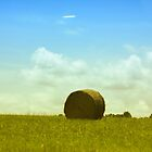 Hay Bale by DeeZ (D L Honeycutt)