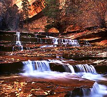 Arch Angel Falls, Zion NP by Edward Mendes