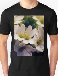 Wildflowers 1 - Hoary Alyssum T-Shirt