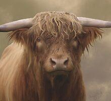 Highland Bull by Moonlake