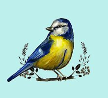 Blue Tit by NicolaSpencer