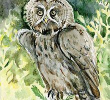 Great Grey Owl by Redilion