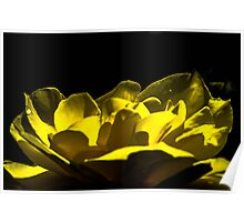 Unreal flower  Poster