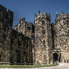Alnwick Castle Gate by Andrew Pounder