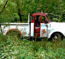 Old Mobile Truck by Tina Hailey
