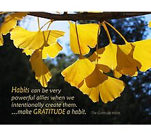 Make Gratitude a Habit Photographic Print