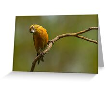 ANGLE OF VIEW Greeting Card