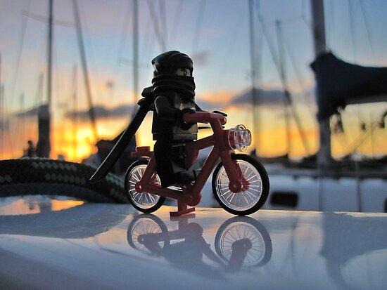 Ninja Training - Riding the Bike by bricksailboat