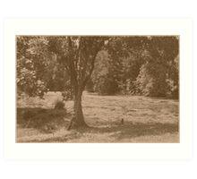 Cemetery Pond  Art Print