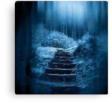 Following the Moon Canvas Print