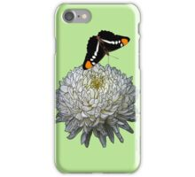 Queen Butterfly - Mint iPhone Case/Skin