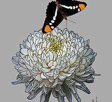 Queen Butterfly - Silver Gray by Jessë Valentine Portz
