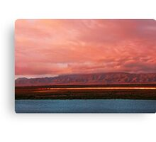 Golden Bullet Canvas Print