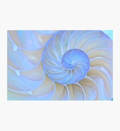 Light Spirals Photographic Print