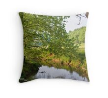 By the still waters...  Throw Pillow
