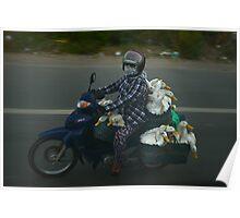 Ducks on a Motorbike Poster