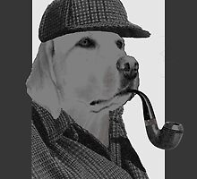 Sherlock Holmes in Grey (dog version) by benyuenkk