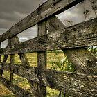 Dutch farmscape after crops by Nicole W.