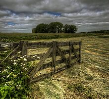 After the crops are in by Nicole W.