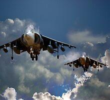 Harrier Approach by J Biggadike