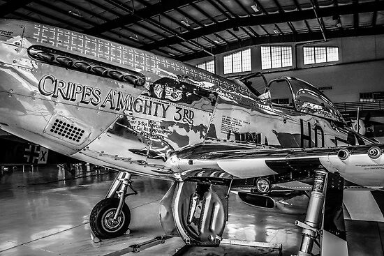 P51 Mustang Fighter plane by chris-csfotobiz