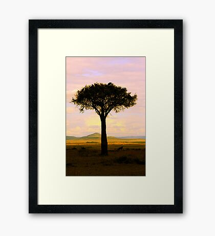 Home To Roost Framed Print