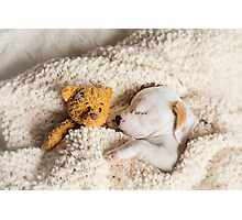 Daisy & Patches Photographic Print