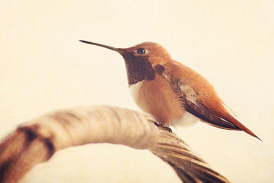 Hummingbird on a Basket by smilingrain