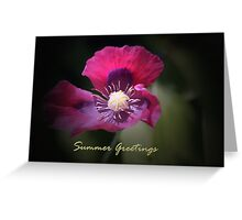 Poppy & Summer Greetings Text Greeting Card