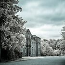 England - Dunham Massey Manor by Kaitlin Kelly