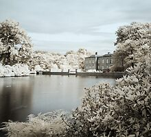 England - Dunham Massey Pond by Kaitlin Kelly