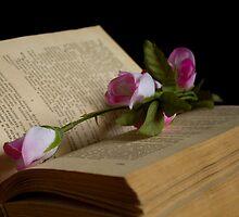 book and rose by slavikostadinov