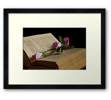 book and rose Framed Print