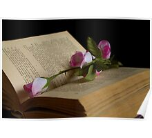 book and rose Poster