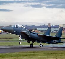 TF-15A 71-0291, the first Strike Eagle by Colin Smedley