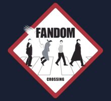 Fandom Crossing v.1 by kldpetriedesign