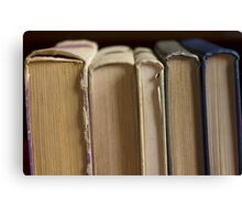 five books Canvas Print