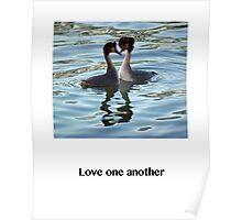 Love One Another - Grebes Poster