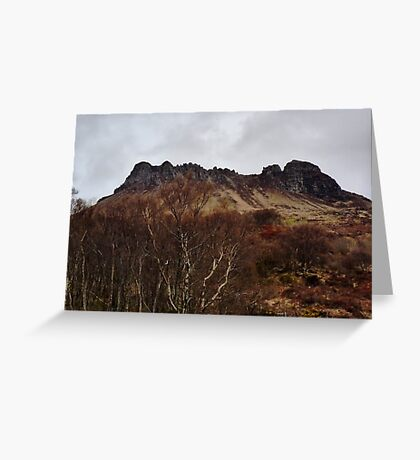Stac Polly's Crown Greeting Card