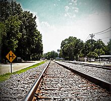 Running Out of Town on a Rail by Terri Chandler